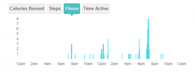 Friday-elevation-FitBit